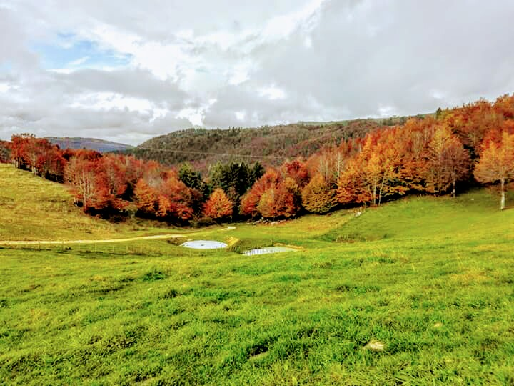 Autunno sopra all'hotel